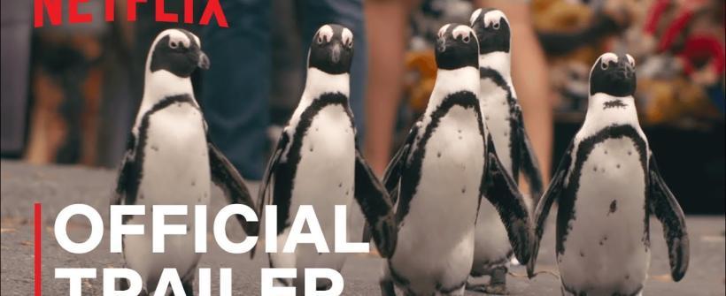 Penguin Town, temporada 1   Tráiler oficial